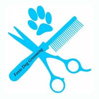Foxie Dog Grooming