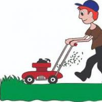 Sunshine Lawn Mowing services