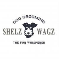 ShelzWagz Dog Grooming