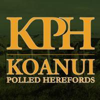 Koanui Polled Herefords Ltd.
