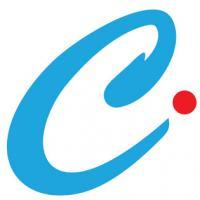 Casa Infotech Limited
