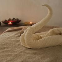 Yin's Remedial Massage Therapy
