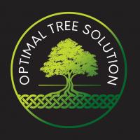 Optimal Tree Solution