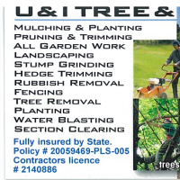 U & I Trees & Landscaping Services Limited