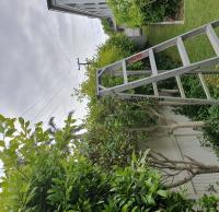 Darcy Lawns Gardening & Landscaping