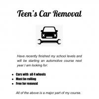 teens car removal
