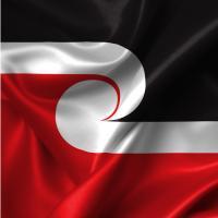 Māori Language tutoring