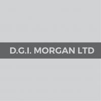 DGI Morgan Ltd