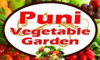 Puni Vege Garden