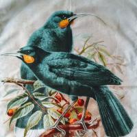 Lovebird Beautilicious