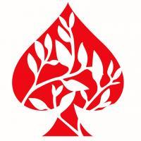 Ace of Spades Ltd