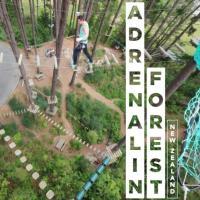 Adrenalin Forest Christchurch