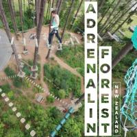 Adrenalin Forest Bay Of Plenty
