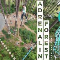 Adrenalin Forest Auckland