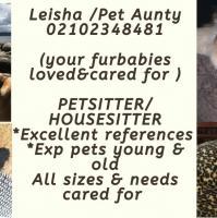 Housesitting / Pet minder ( not a business)
