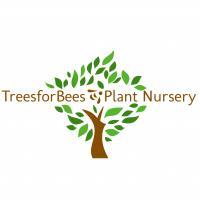 TreesforBees Plant Nursery