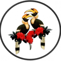 Hornbill Cleaning Domestic and Commercial Company