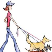 Hot Dogs - Your Friendly Dog Walker