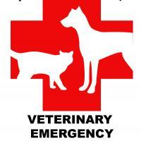 North Shore Veterinary Emergency & Critical Care