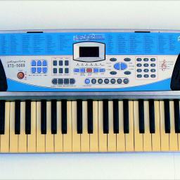 Angelet Xts 50 Electronic Keyboard Neighbourly Johnsonville Wellington